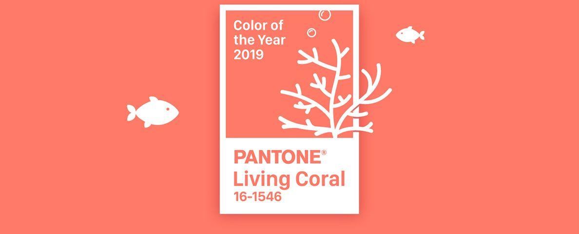 living coral colore pantone 2019 grafica novara